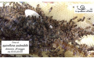 Introduzione all'apicoltura sostenibile