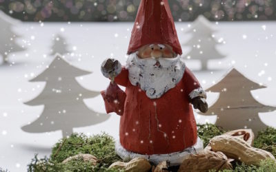 Prepariamo al Natale laboratori per grandi e piccini…