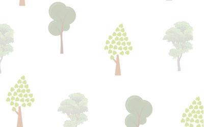 Tra cielo e terra: l'albero……